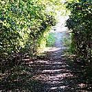 A.T. North of Carlisle-Harrisbuirg Pike, U.S. Rte. 11, Cumberland Valley, PA, 09/27/13