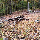 Camp Site North Of Whiskey Springs Road, PA, 10/06/12 by Irish Eddy in Views in Maryland & Pennsylvania