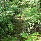 Hogestown Run by Irish Eddy in Views in Maryland & Pennsylvania
