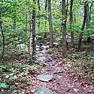 A.T. Ascent Of Rocky Ridge, PA, 09/02/12 by Irish Eddy in Views in Maryland & Pennsylvania