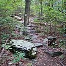 A.T. Ascent Of Rocky Ridge, PA, 09/02/12