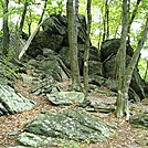 A.T. On Rocky Ridge, PA, 09/02/12 by Irish Eddy in Views in Maryland & Pennsylvania