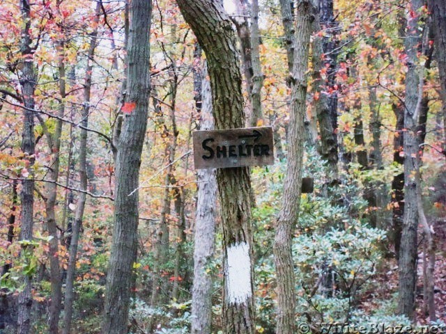 Side Trail To Alec Kennedy Shelter, PA, 10/06/12