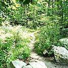 A.T. Crossing At Appalachian Trail Road, PA, 08/07/12 by Irish Eddy in Views in Maryland & Pennsylvania