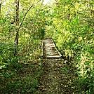 A.T. Boardwalk At Conodoguinet Creek, Cumberland Valley, PA, 09/27/13