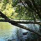 U-Turn At Conodoguinet Creek, Cumberland Valley, PA, 09/27/13
