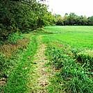 A.T. On Farmland Near Boiling Springs, PA, 10/06/12 by Irish Eddy in Views in Maryland & Pennsylvania