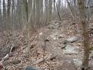 Snikcers Gap, Va, 02/14/09 by Irish Eddy in Views in Virginia & West Virginia