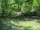 A. T. Near Black Rock Cliff, Md, 05/23/09 by Irish Eddy in Views in Maryland & Pennsylvania