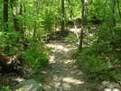 A. T. Near Black Rock Creek, Md, 05/23/09 by Irish Eddy in Views in Maryland & Pennsylvania