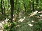 A. T.  Near Pogo Memorial Campsite, Md, 05/23/09 by Irish Eddy in Views in Maryland & Pennsylvania