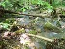 A. T. Stream Crossings At Warner Gap Hollow, Md, 06/06/09 by Irish Eddy in Views in Maryland & Pennsylvania