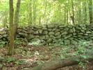 A. T. At Buzzard Knob, Md, 06/06/09 by Irish Eddy in Views in Maryland & Pennsylvania