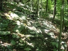 A. T. Ascent To Raven Rock, Md, 06/06/09 by Irish Eddy in Views in Maryland & Pennsylvania