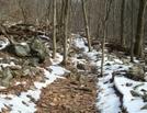 A.t. Ascent Of Mount Donlop, Pa, 01/16/10