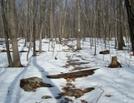 Mount Dunlop Summit, Pa, 01/16/10 by Irish Eddy in Views in Maryland & Pennsylvania