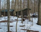 Hooligan At Deer Lick Shelters, Pa, 01/16/10 by Irish Eddy in Views in Maryland & Pennsylvania