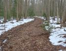 A. T. North Of Deer Lick Run, P A, 01/16/10