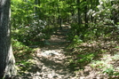 A.t. Ascent Of Buzzard Peak, P A, 05/20/10 by Irish Eddy in Views in Maryland & Pennsylvania