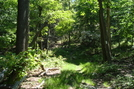 A. T. Ascent Of Buzzard Peak, P A, 05/30/10 by Irish Eddy in Views in Maryland & Pennsylvania