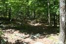 A.t. At Buzzard Peak, Pa, 05/30/10 by Irish Eddy in Views in Maryland & Pennsylvania
