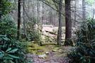 A. T. North Of Locust Gap Road, P A, 09/04/10 by Irish Eddy in Views in Maryland & Pennsylvania