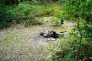 Camp Site Near Methodist Hill, P A, 09/04/10 by Irish Eddy in Views in Maryland & Pennsylvania