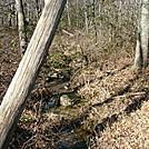 A.T. Near Dead Woman Hollow, P A, 11/25/11 by Irish Eddy in Views in Maryland & Pennsylvania
