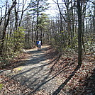 Side Trail To Michener Cabin, PA, 11/25/11 by Irish Eddy in Views in Maryland & Pennsylvania