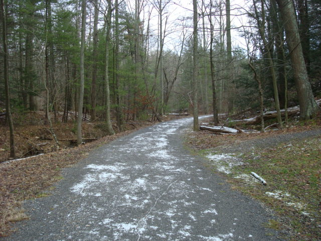 A.T. Junction With Old Railroad Bed Road, PA, 12/30/11