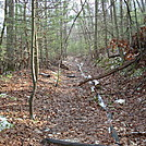A.T. Ascent Of Piney Mountain, PA, 12/30/11 by Irish Eddy in Views in Maryland & Pennsylvania