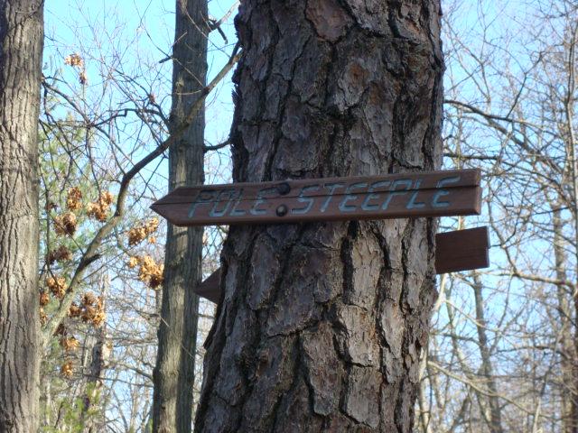 Pole Steeple Trail Marker, PA, 12/30/11