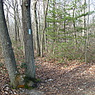 A.T. Junction With Pole Steeple Trail, PA, 12/30/11 by Irish Eddy in Views in Maryland & Pennsylvania
