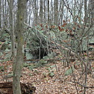 A.T. North Of Pole Steeple Trail, PA, 12/30/11 by Irish Eddy in Views in Maryland & Pennsylvania