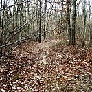 A.T. Junction With Limekiln Road On Piney Mountain, PA, 12/30/11 by Irish Eddy in Views in Maryland & Pennsylvania