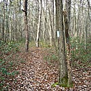 A.T. Junction With Mountain Creek Campground Trail, PA, 12/30/11 by Irish Eddy in Views in Maryland & Pennsylvania
