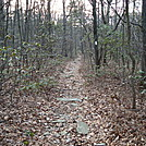 A.T. Junction With Mountain Creek Campground Trail, PA, 12/30/11