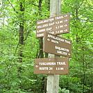 Trail Marker on Blue Mountain, PA, June 2015