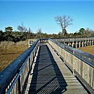 Assateague Island National Seashore: Life of the Marsh Trail
