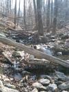 Stream Crossing At Bears Den Rocks, Va, 02/14/09