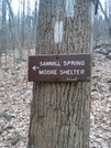 Near Sam Moore Shelter, Va, 02/14/09 by Irish Eddy in Views in Virginia & West Virginia