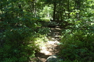 A. T. North Of Mont Alto Road, P A Rte. 233, P A, 07/03/10 by Irish Eddy in Views in Maryland & Pennsylvania