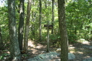 Side Trail To Rocky Mountain Shelter, P A, 07/03/10 by Irish Eddy in Views in Maryland & Pennsylvania