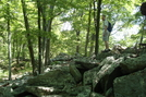 A. T. On Rocky Mountain, P A, 07/03/10 by Irish Eddy in Views in Maryland & Pennsylvania