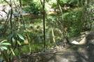 A. T. At Conococheague Creek, Caledonia S. P., P A, 07/03/10