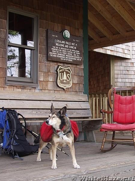 Jupiter at Zeland Falls Hut