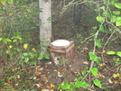 Tennessee Outhouse by Trail Bug in Special Points of Interest