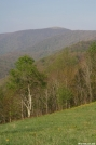 southviewofbigbald by Tn Bandit in Trail & Blazes in North Carolina & Tennessee