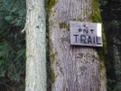 Pacific Northwest Trail White Blaze And Sign In Washington
