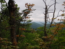 Max Patch To Hot Springs by Squinty in Views in North Carolina & Tennessee